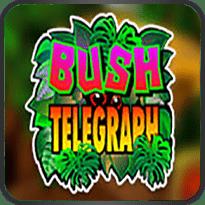 Bush-Telegraph