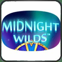 Midnight-Wild