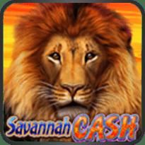 Savannah-Cash