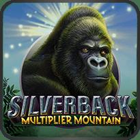 Silverback-Multiplier-Mountain