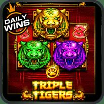 Triple-Tigers™